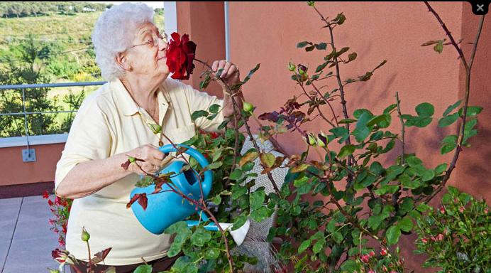 El nuevo concepto de residencias de ancianos