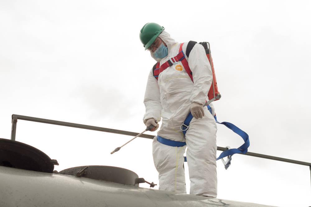 Las plagas, un problema de primera magnitud en verano